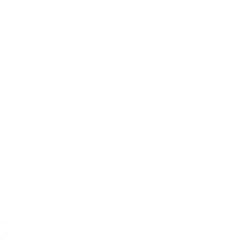 Mountain Painting Company Light Logo